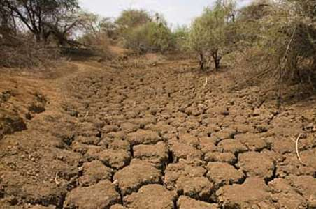 drought-apstory