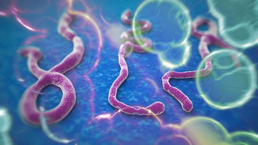 Ebola-story