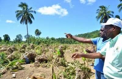 Flood affected farmers