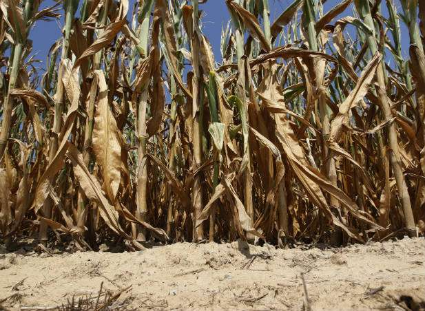 Government to implement multi-million drought mitigation project for farmers