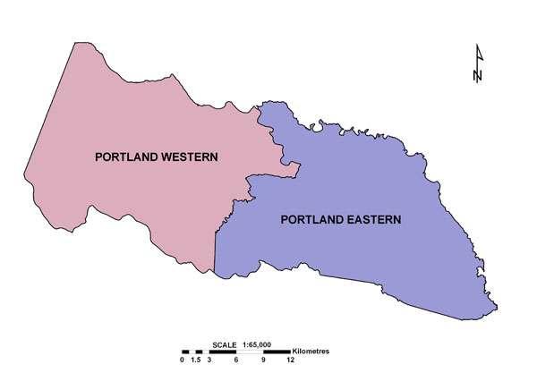 Move to Oust Portland Mayor