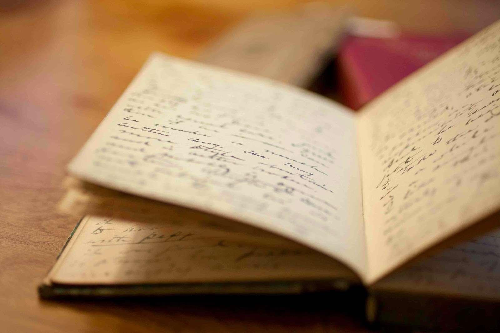 West Kingston Enquiry: Inside A Gunman's Diary