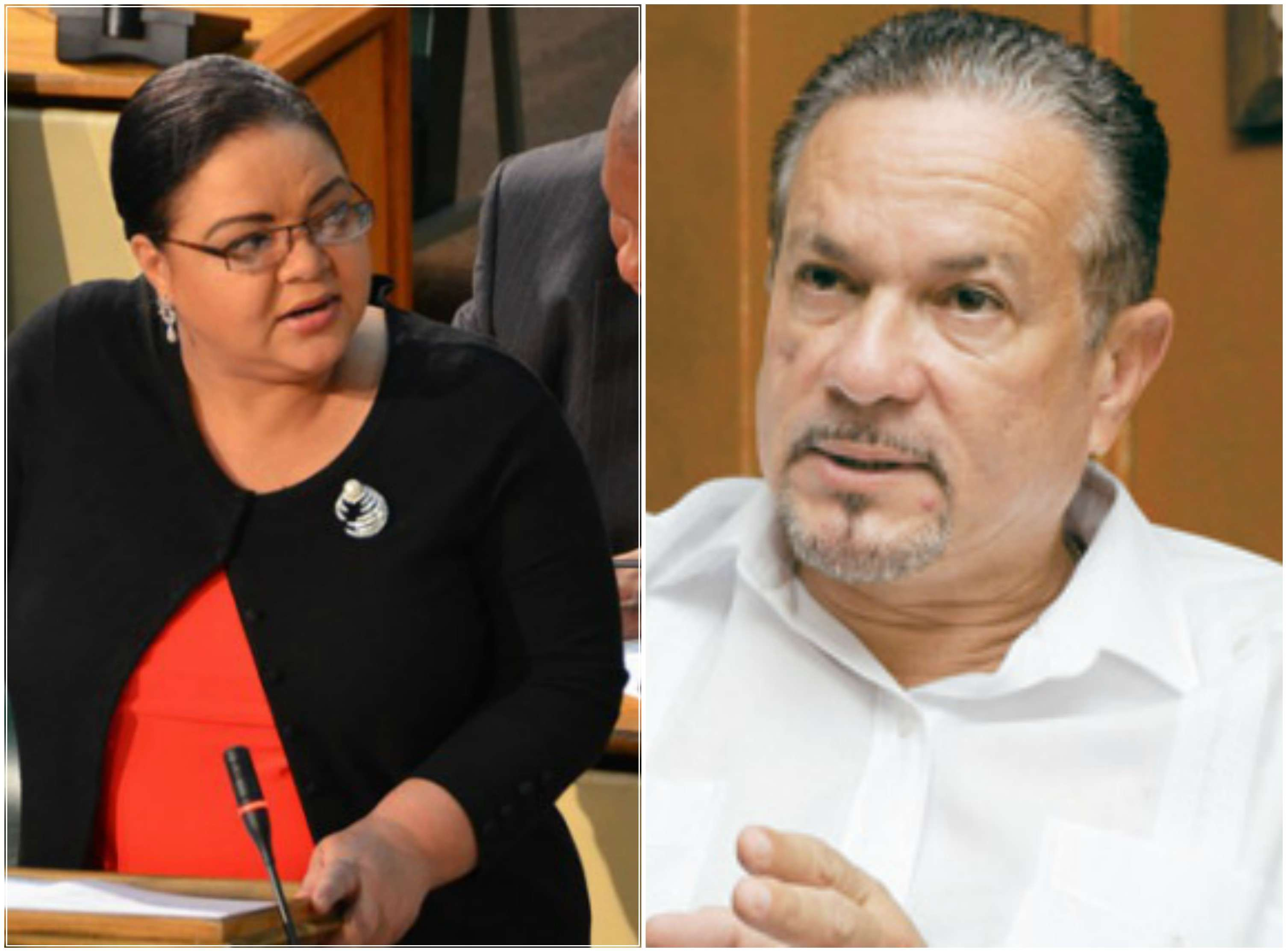 Testy Exchanges Between Finson, Falconer in Senate