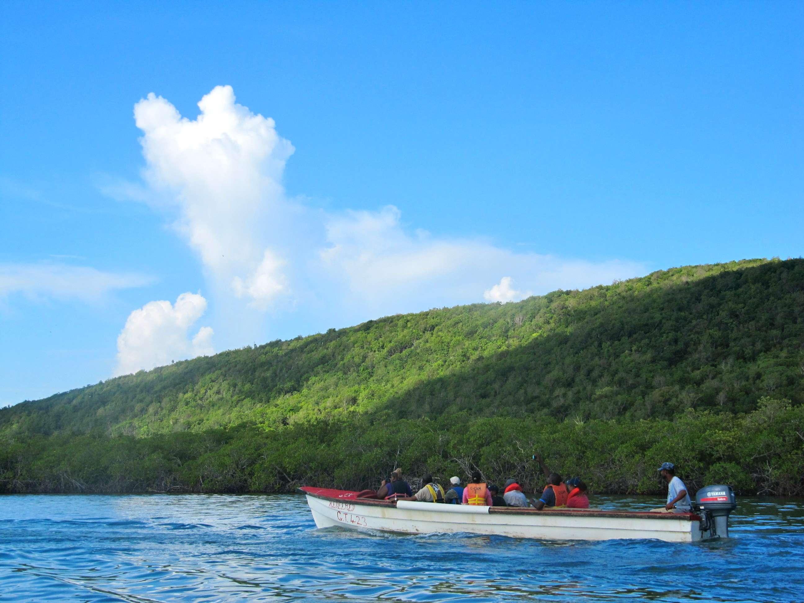 Goat Islands Development Still Alive