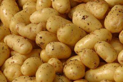 Billion Dollar Boost for Irish Potatoes