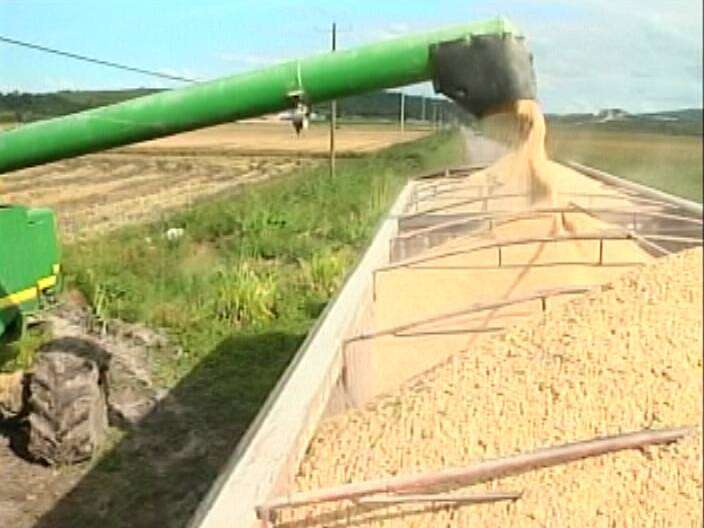 CARICOM Moves to Quell Belize-Guyana Rice Row