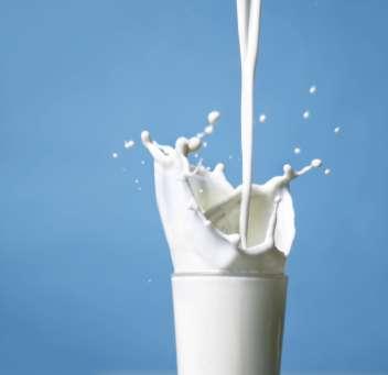 Reviving Jamaica's Dairy Industry