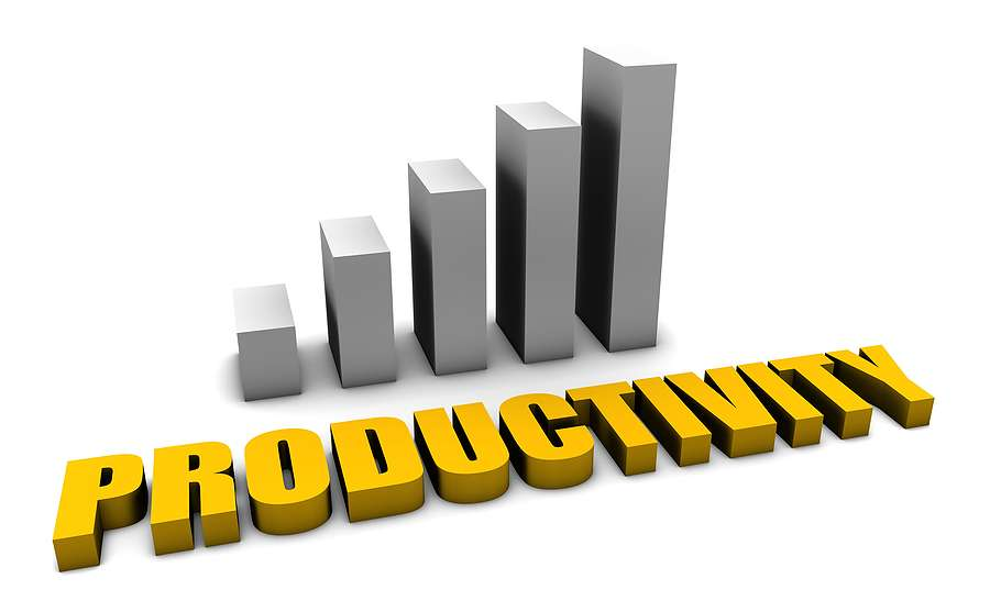 Gov't to Appoint Productivity Czar