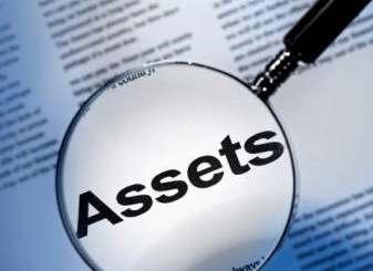 Should Politicians Publicly Declare their Assets?
