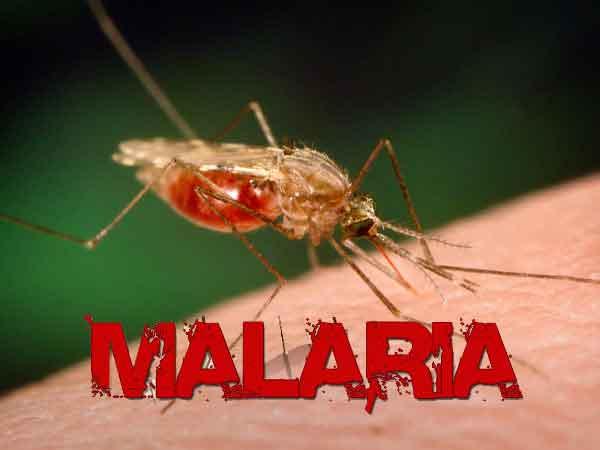 Health Ministry Confirms Malaria Case