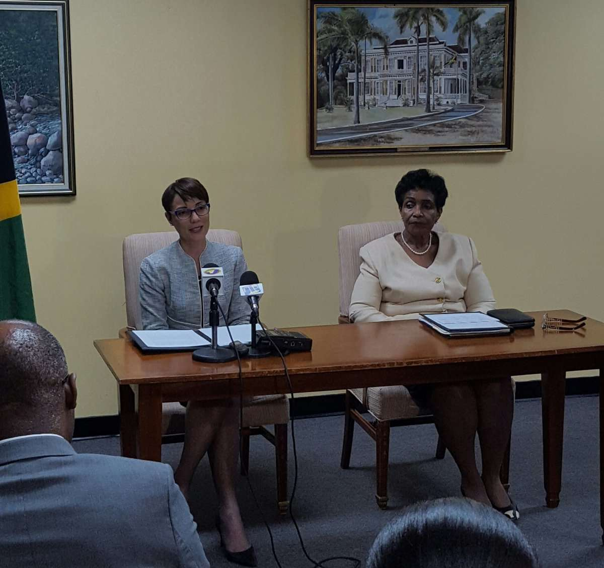 Jamaica Won't Interfere with Venezuelan Crisis