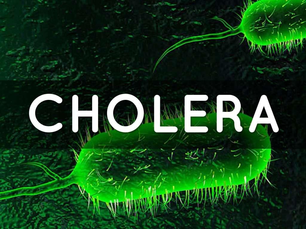 Prelim Results Prove NO Cholera in Jamaica