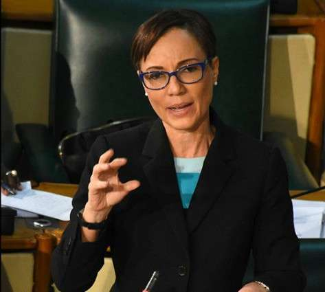 Johnson-Smith Opens NIDS Debate in Senate