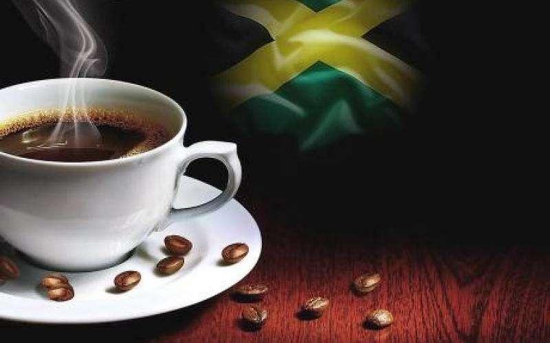 Coffee Industry Board Loses $390m in Marcus Garvey Dr Flood