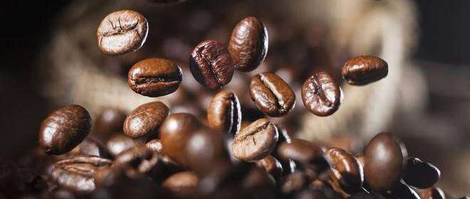 Jamaica Not Alone in Struggle with Low Coffee Prices