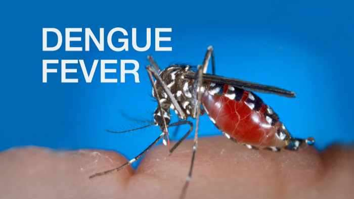 'Spike in Dengue; But No Outbreak', says Health Ministry