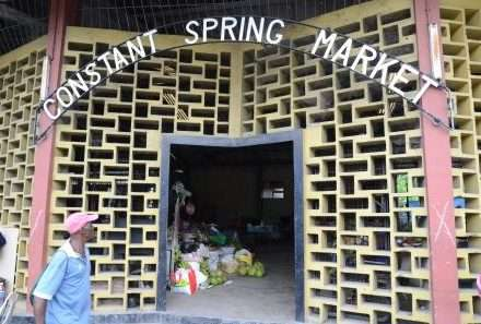 Constant Spring Market Vendors Granted Temporary Injunction