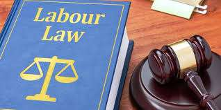 Former IDT Adjudicator Calls for Review of Labour Laws