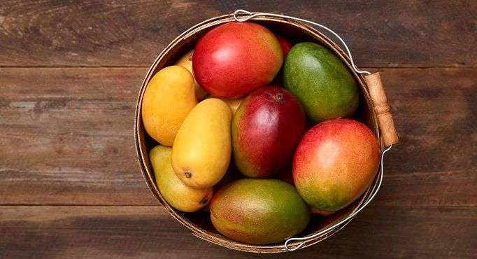 Jamaica Exports First Shipment Of Mangoes to The US
