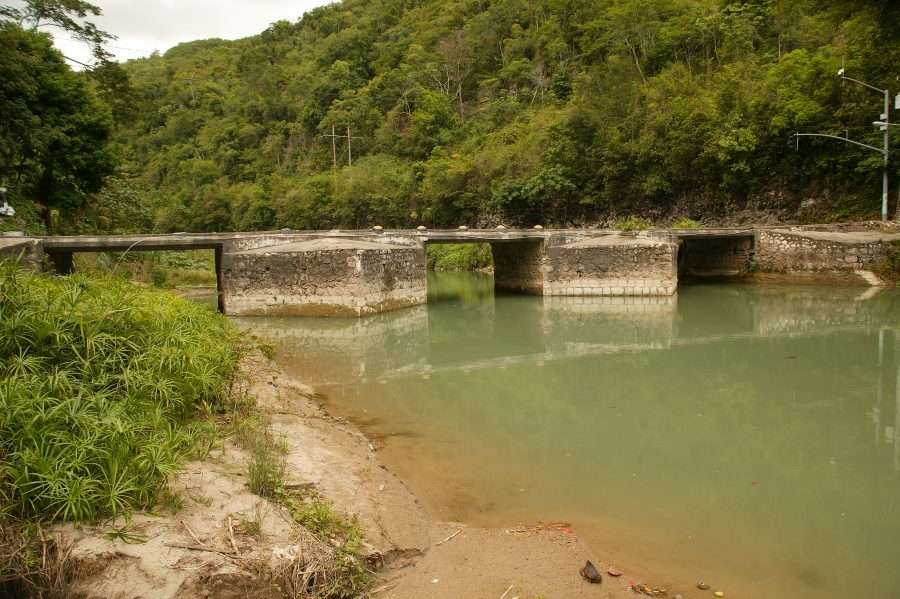 NEPA Suggests Major Rio Cobre Fish Kill Due To Effluent Overflow From WINDALCO
