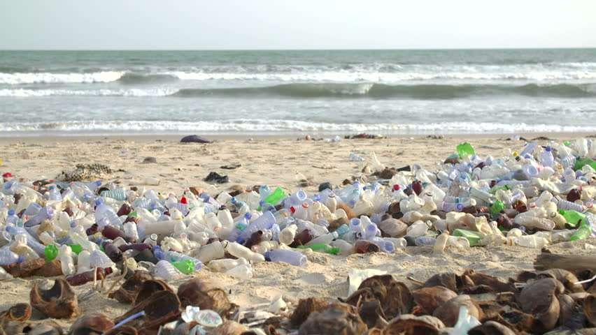 Plastic Bottles Still #1 Collected Waste Item in Coastal Cleanup – JET