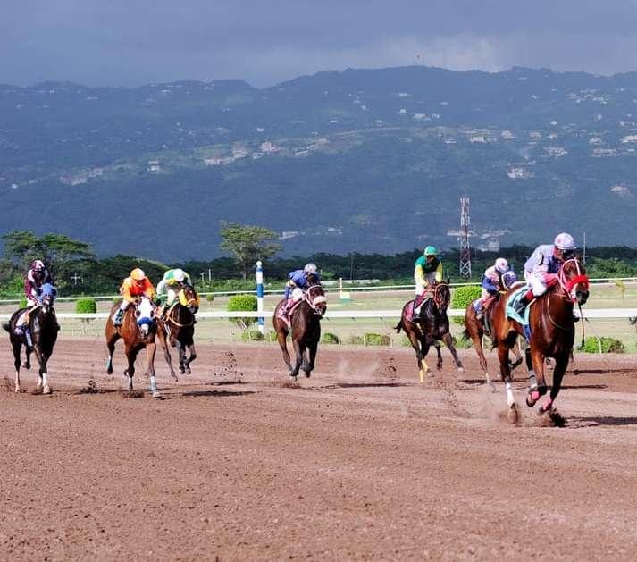 SVREL Eyeing Regional Jockey's Championship