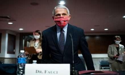 Coronavirus: Fauci Warns of 100,000 US Cases per day