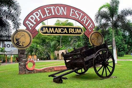 J. Wrap & Nephew To Cease Operation of Appleton Estates Sugar Factory