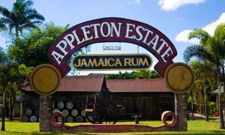 Consultations To Begin Next Week Over Future of Appleton Sugar Estate