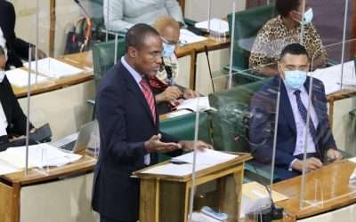Gov't Tables Legislation To Draw Down $57 Billion from NHT in 5 Years